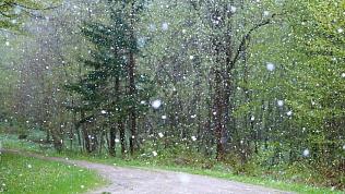 Сильные ветры и снег придут на Южный Урал