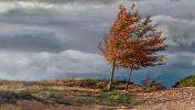Усиление ветра и понижение температуры ожидается в Челябинской области