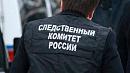 Беременностью воспитанниц приюта в Челябинской области заинтересовались следователи