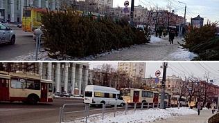 Нелегальные елочные базары убирают в Челябинске