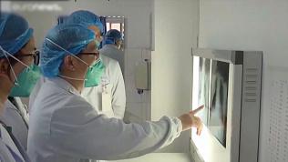 Учёные выяснили происхождение коронавируса