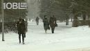 В Челябинске выпала почти месячная норма снега