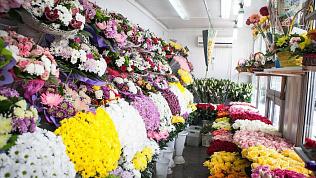 320 тысяч цветов завезли к 8 марта в Челябинскую область