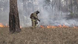 Начался сезон лесных пожаров