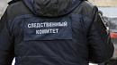Директора фирмы в Челябинске обвиняют в уклонении от налогов на 36 миллионов рублей