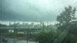 Новая неделя в Челябинской области начнётся с дождей