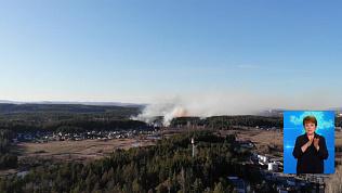 В регионе стало меньше лесных пожаров