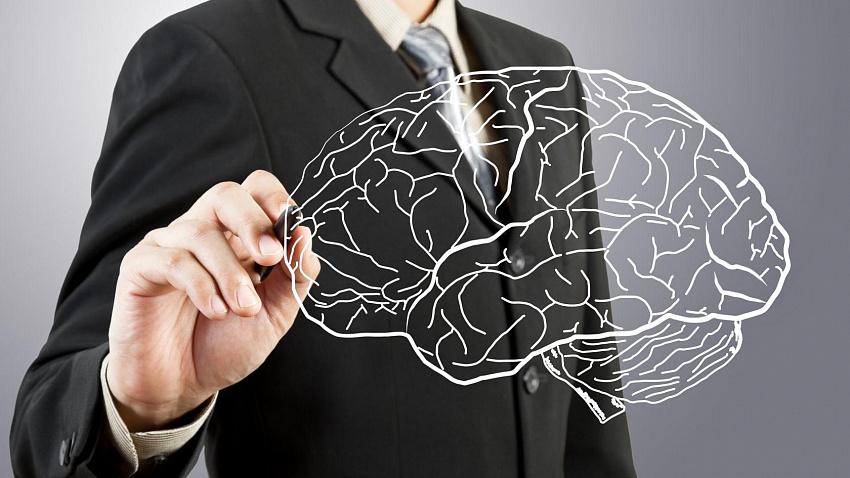 Развивать мозг никогда не поздно