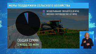Меры поддержки сельского хозяйства