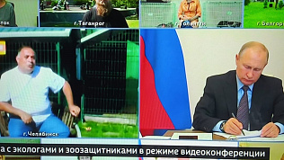 Зоозащитник Карен Даллакян удостоился благодарности Владимира Путина