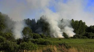 В Челябинске несколько поселков чуть не пострадали из-за загоревшегося тополиного пуха