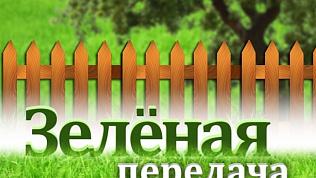 """""""Удачный сезон"""" на ОТВ: садоводы могут выиграть полезные призы"""