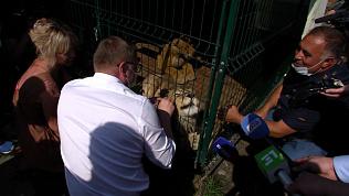 Алексей Текслер посетил приют для диких животных и птиц «Спаси меня»