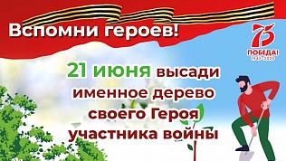 Новый парк появляется в Сосновском районе: видеоролик о высадке деревьев