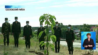 В Долгодеревенском высадили 75 яблонь Победы