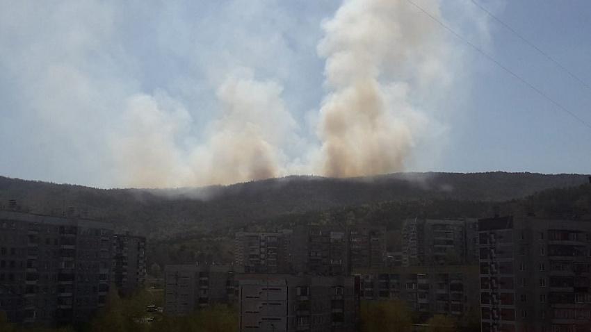 Пожар в Ильменском заповеднике перерос в уголовное дело