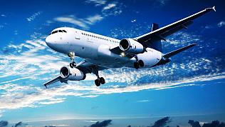 Дату и критерии возобновления международных полётов назвала Голикова
