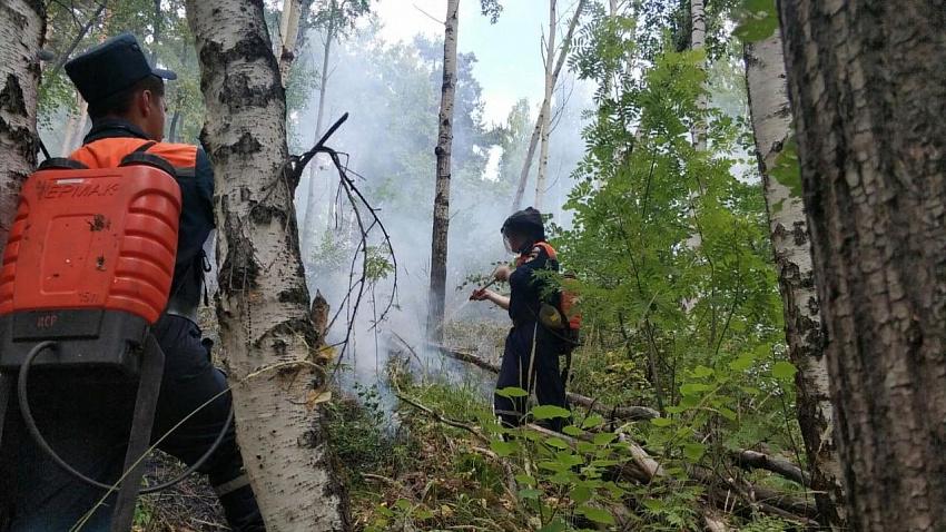 Пожаром на Тургояке заинтересовалась Генеральная прокуратура РФ