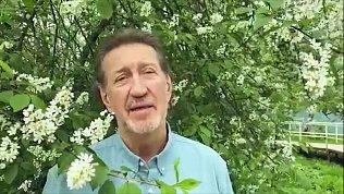 Олег Митяев опубликовал видеоклип на свою новую песню «Аннушка»