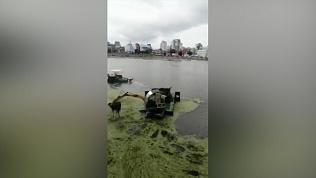 Плавучий экскаватор попал на видео в центре Челябинска