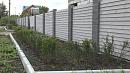 Похититель 47 метров кизильника из центра Челябинска задержан