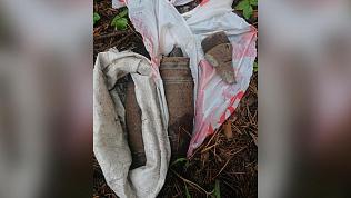 Боеприпасы обнаружил челябинец во время прогулки
