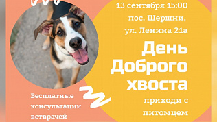 «Добрый хвост» приглашает владельцев с питомцами на праздник в Челябинске