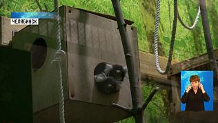В зоопарке открылись тёплые вольеры