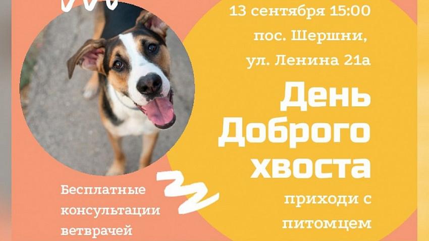 В Челябинске состоится «День доброго хвоста»