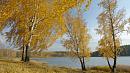 Сильный ветер и дожди прогнозируются в Челябинской области