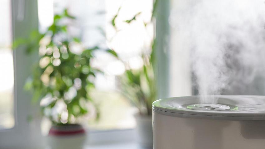 Как не стать заложником плохого воздуха в квартире: 7 простых советов