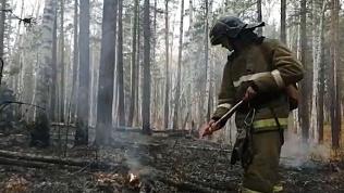 Сотня людей тушит крупный лесной пожар в Каслинском районе