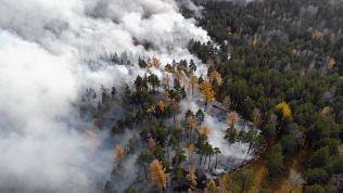 В Челябинской области за сутки зафиксировали несколько крупных лесных пожаров