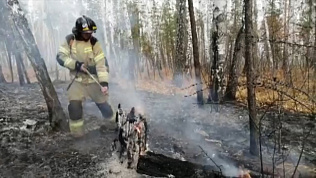 Масштабный лесной пожар разгорелся на территории Каслинского района