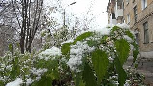 В некоторых городах Челябинской области уже выпал снег