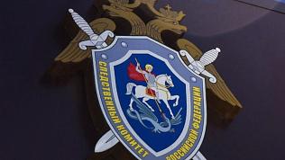 Челябинского ветеринара подозревают вполучении взятки