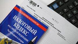 В Челябинской области приставы взыскали более 20 миллионов рублей долгов по налогам