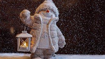 Онлайн-трансляция благотворительной акции «Снеговики-Добряки»