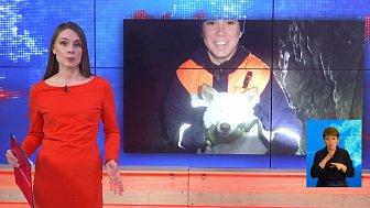 Челябинские спасатели вызволили собаку из западни