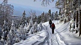 Челябинская область заняла 16 место в Национальном туристическом рейтинге