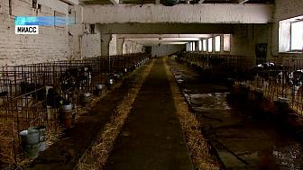 В регионе расширяют молочное производство