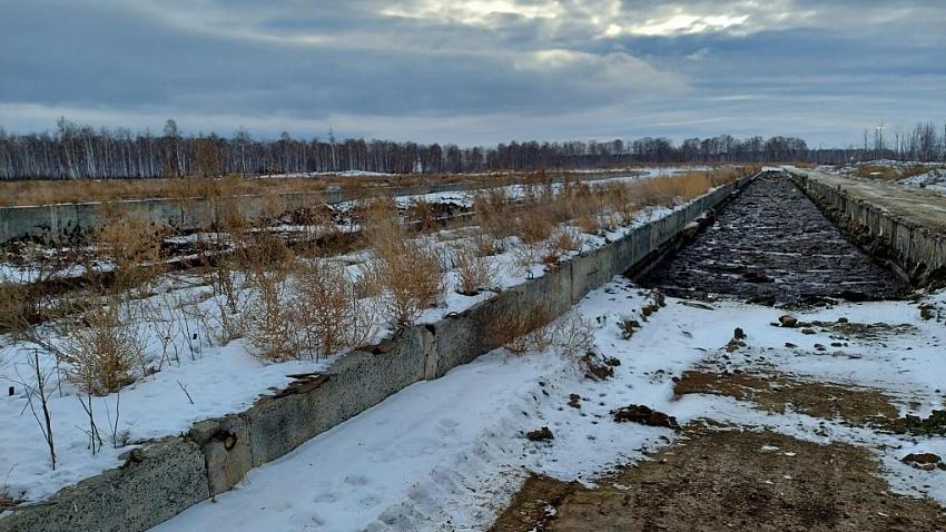 Челябинская прокуратура выявила нарушения на Сосновской птицефабрике