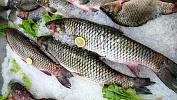 Житель Челябинска «от скуки» украл22кг рыбы нарынке