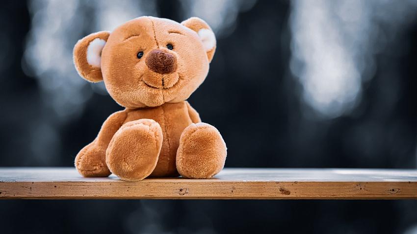 Накануне 8 марта в Челябинской области онлайн-продажи мягких игрушек выросли в шесть раз