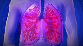 Вебинар «Школа здоровья»: Всемирный день борьбы с туберкулезом