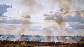 Ответственность за тушение пожаров в полях передают главам муниципалитетов Челябинской области